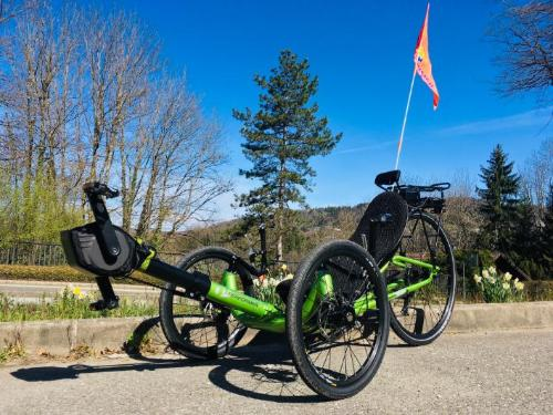 Tricycle couche electrique PERFORMER
